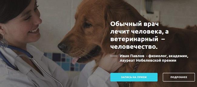 alfavet24.com - ветклиника в Самаре